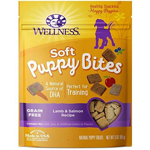 Puppy training treats day one start housetraining crate training