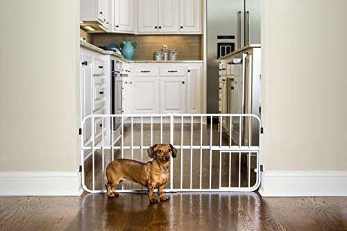 How to puppy proof your home with dog gates fences play pen