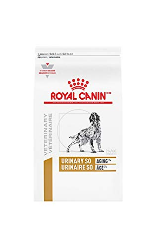 Best urinary care for older dogs Royal Canon Urinary SO Aging 7+