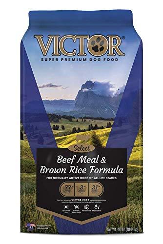 Victor super premium dog food brand review