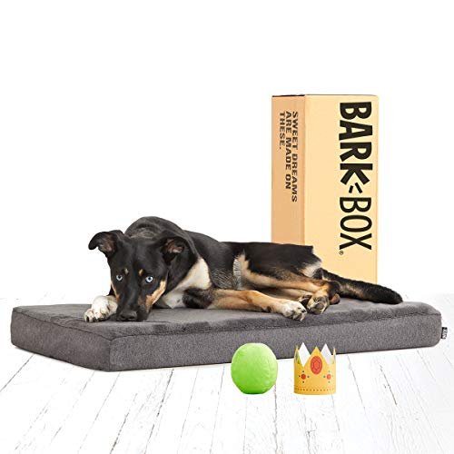 BarkBox Memory Foam Dog Bed for joint relief