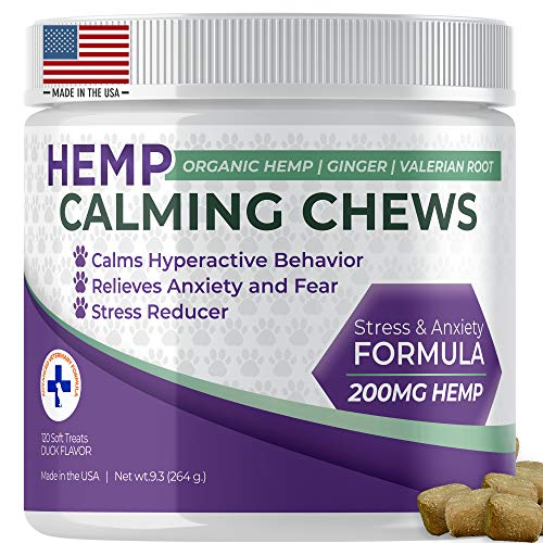 Hemp calming chews for dog reduce anxiety stress of bathing in water