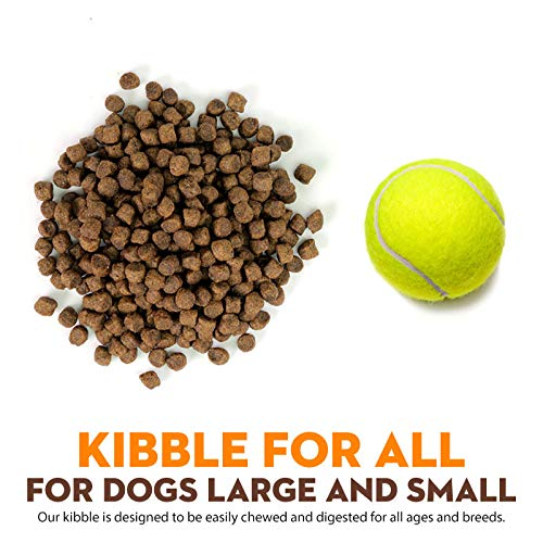 What's bad about Supreme Source dog food cons kibble size