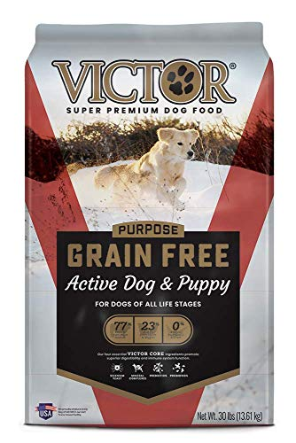 Is Victor brand dog food more reliable than Taste of the Wild