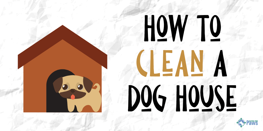 How to Clean a DogHouse