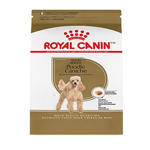 Dog food brand comparison Royal Canin vs Science Diet which is better for my dog