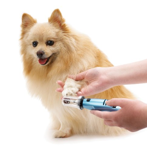 Is a pet nail grinder good for taking care of small large old dog claws