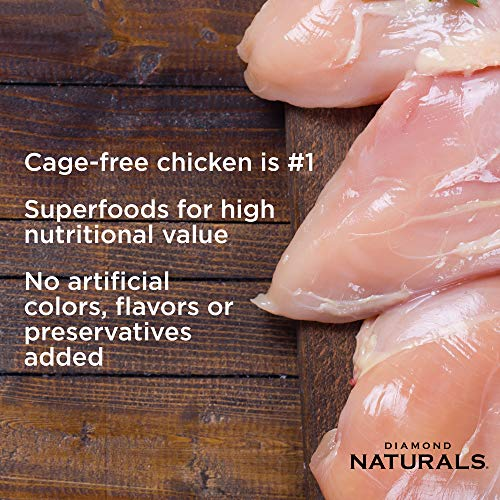 Lean cage free chicken in dog food without artificial ingredients