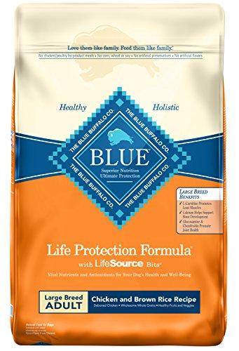 Blue Buffalo brand overview pros cons recalls quality