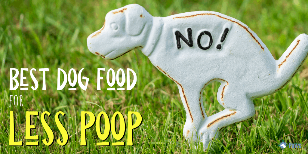 Best Low Fiber Dog Food for Less Poop