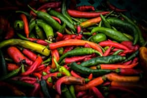 Can dogs eat spicy food peppers capsaicin irritate stomach intestines