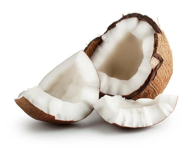 What parts of coconut can dogs eat is it good for canines health skin coat nails