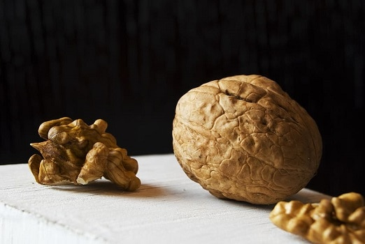 Can dogs eat black English walnuts tree nuts are they safe poison puppy