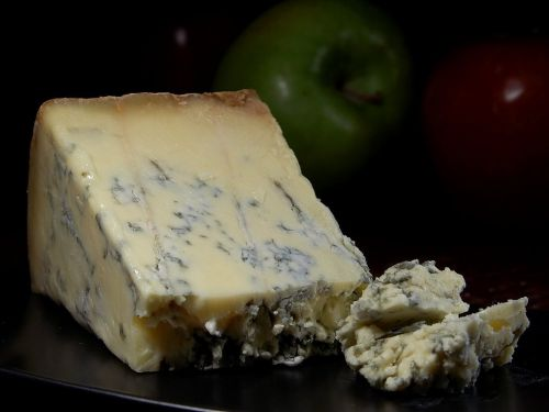 Is blue cheese stilton mold safe for dogs to eat potential dangers