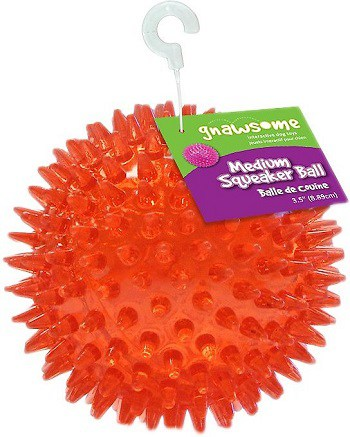 Gnawsome best budget indestructible dog toy that will last a long time