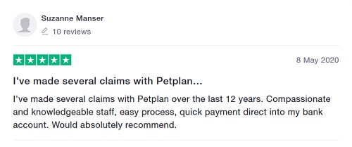Petplan testimonial hands on review good or bad pet insurance what are people saying