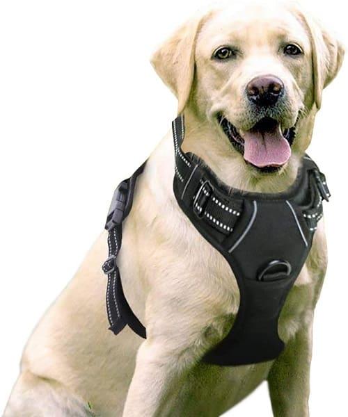 RabbitGoo Dog Harness upgrade pick dog harness top of the line choice
