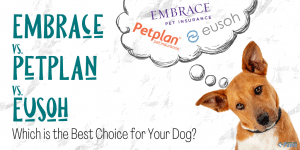 Embrace vs PetPlan vs Eusoh_ Which is the Best Pet Insurance Company