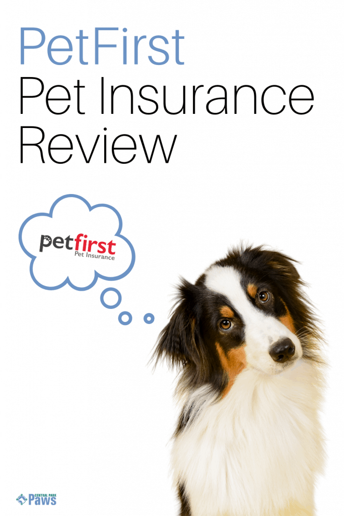 PetFirst Dog Insurance Review Pinterest