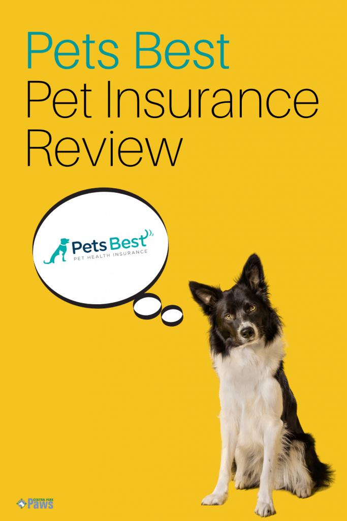 Pets Best Dog Insurance Review Pinterest