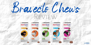 Bravecto Chews for Dogs Review