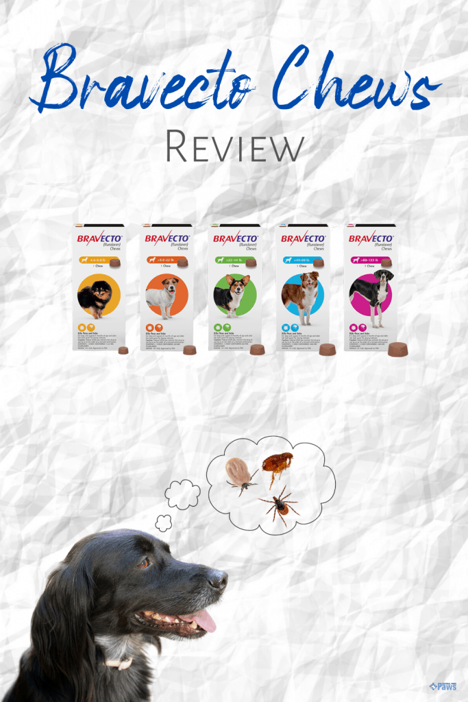 Bravecto Chews for Dogs Review - Pinterest