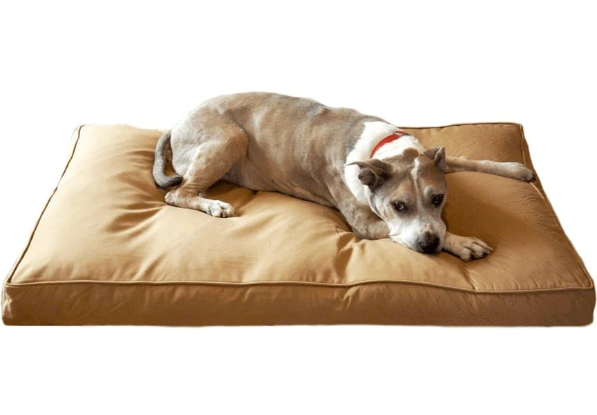 Bully Bed overall best indestructible dog bed for heavy chewers