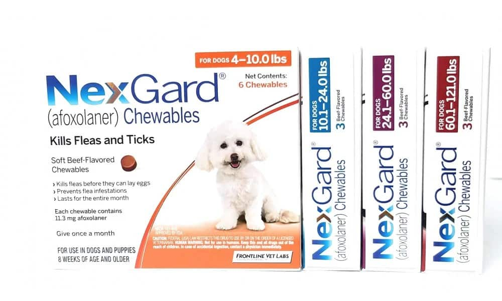 NexGard review chewable flea tick killer medication safety side effects