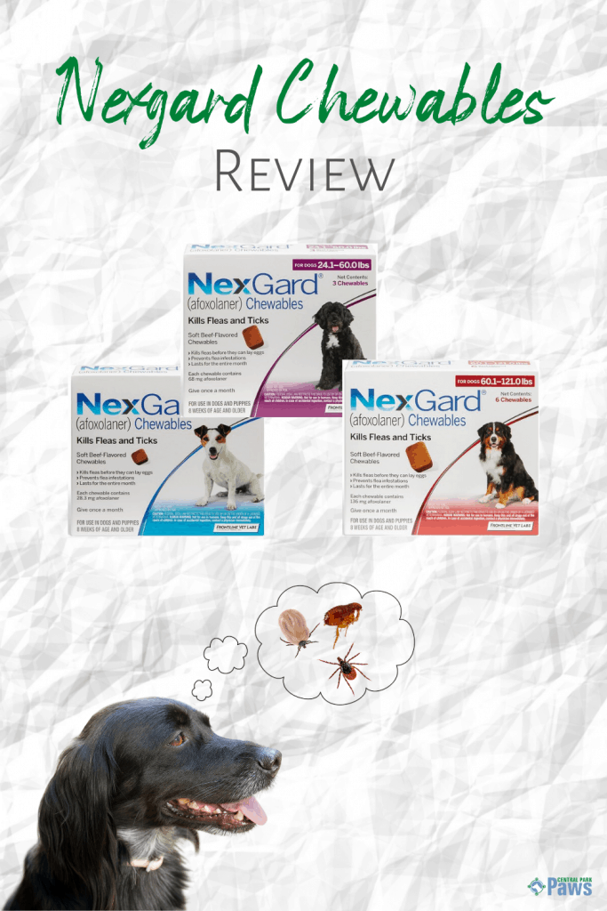 Nexgard Chewables for Dogs Review - Pinterest