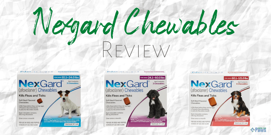 Nexgard Chewables for Dogs Review