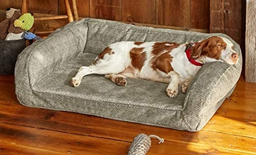 Orvis Toughchew memory foam bolster tough chew resistant dog bed