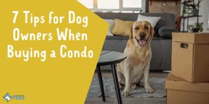 7 Tips for Dog Owners When Buying a Condo