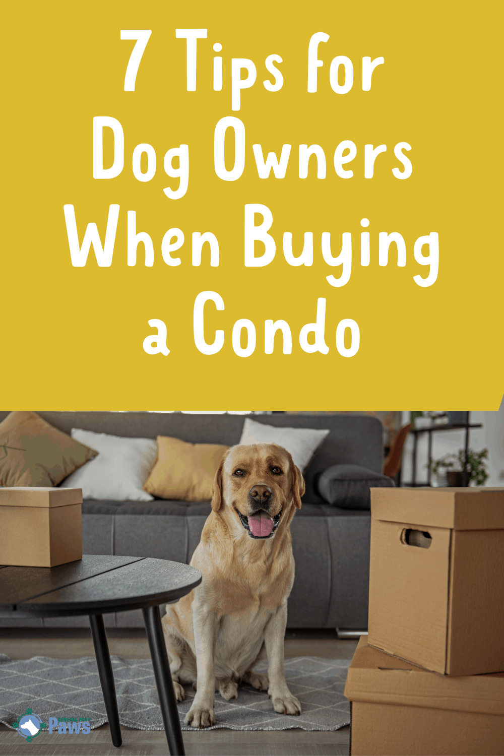 7 Tips for Dog Owners When Buying a Condo - Pinterest