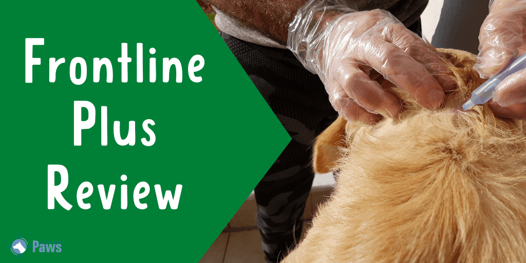 Frontline Plus Topical Flea and Tick Treatment for Dogs Review