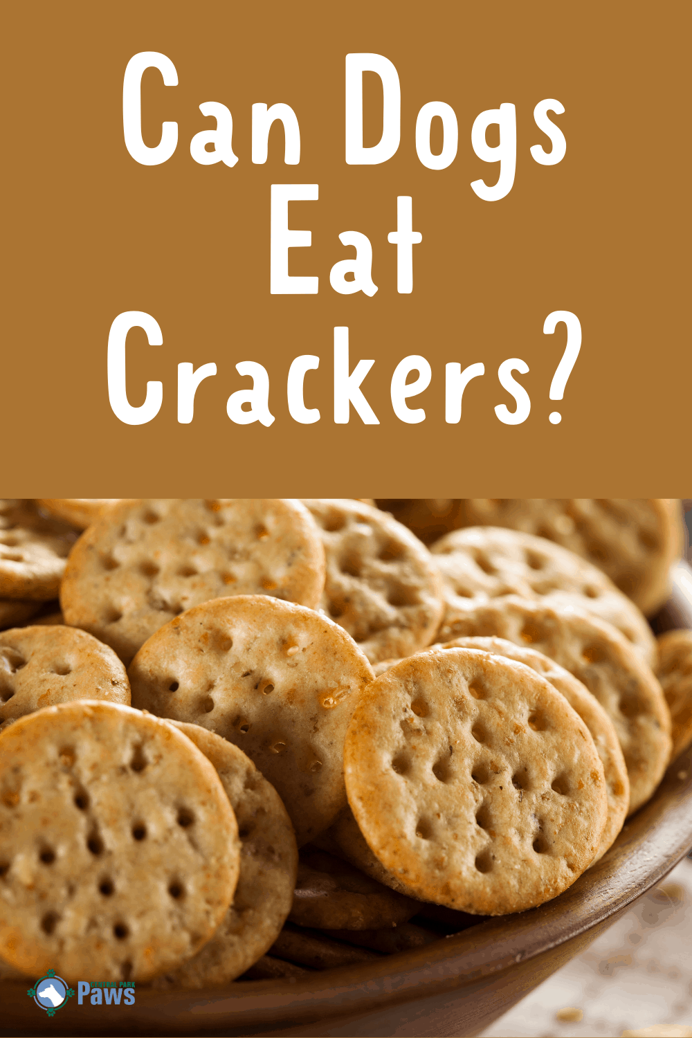 Can Dogs Eat Crackers? Should You Share Cheese, Ritz, and ...