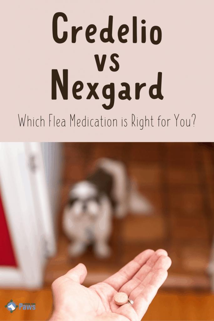 Credelio vs Nexgard Flea Medications - Pinterest