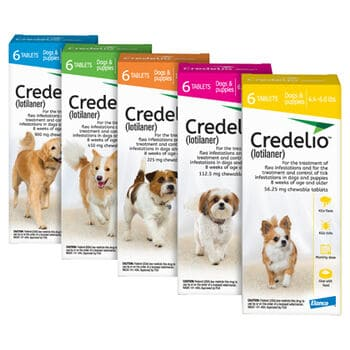 Credelio litolaner effective antiparasitic flea tick chewable medicine for dogs