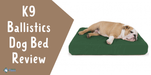 K9 Ballistics Tough Orthopedic Dog Bed Review