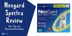 Nexgard Spectra Flea, Tick, and Heartworm Prevention for Dogs Review