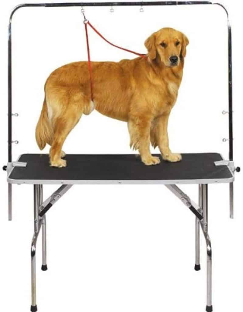 Grooming table with secure arm for restraining dog while trimming nails