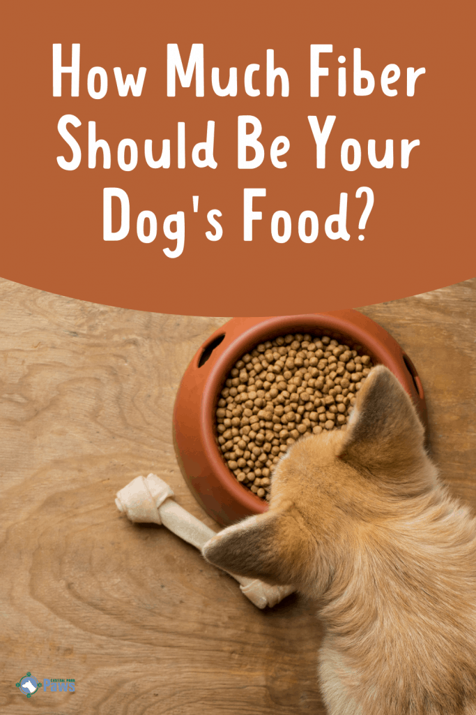 How Much Fiber Should Be in Dog Food Pinterest