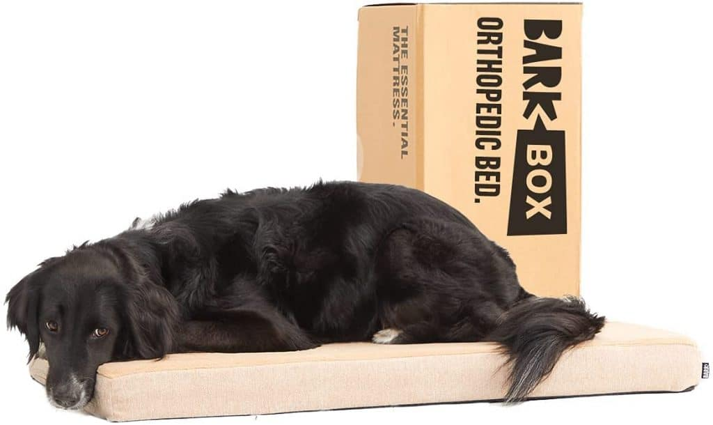 Bark Box memory foam best budget orthopedic dog bed