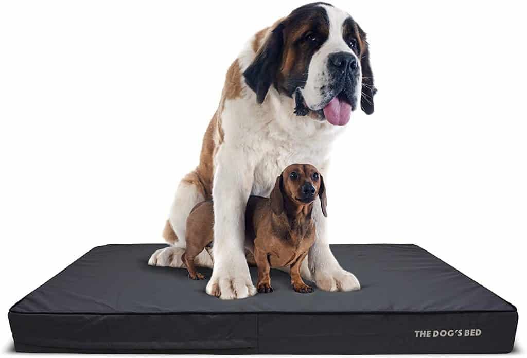 The Dogs Bed best extra large orthopedic for large breeds