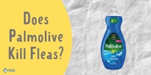 Does Palmolive Kill Fleas and Flea Eggs