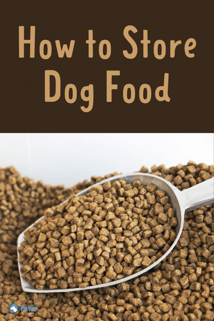 How to Store Dog Food Safely Long term and short term - Pinterest