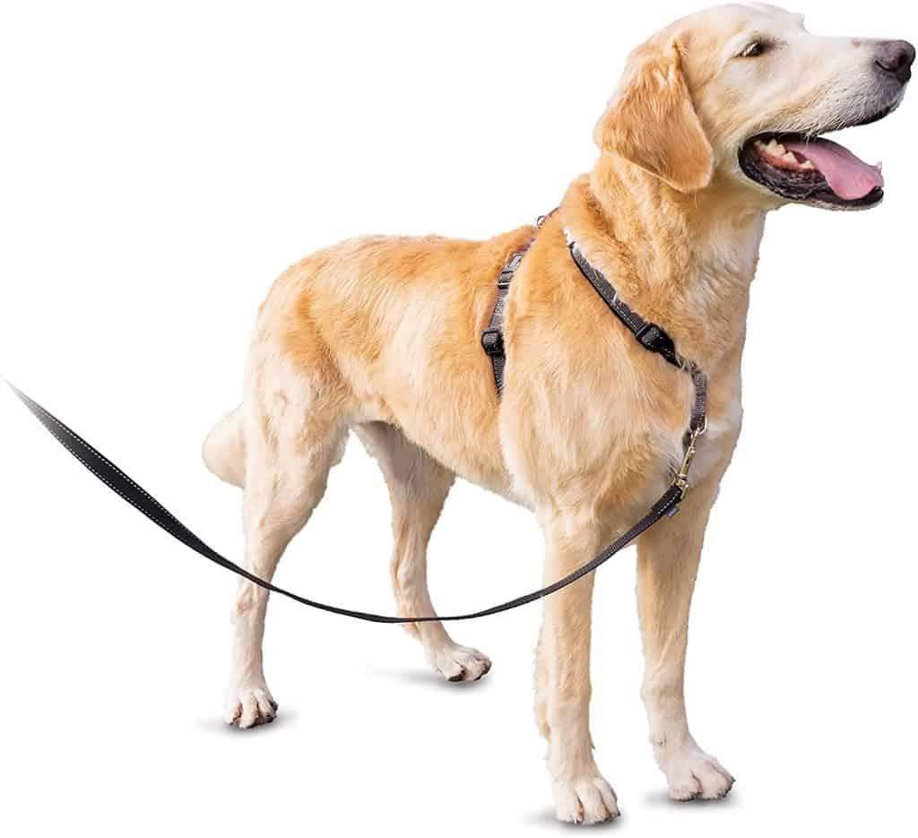 PetSafe 3 in 1 dog harness multiple purpose training collar harness seatbelt chest back